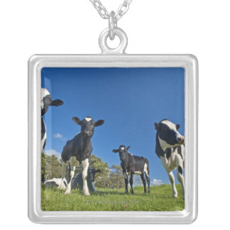 Cows feeding on pasture square pendant necklace