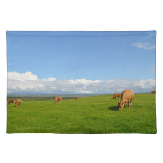 Cows grazing in a meadow in Ireland placemat