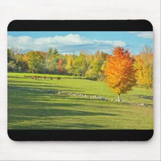Cows Grazing  In Colorful Fall Farm Field Maine Mouse Pad