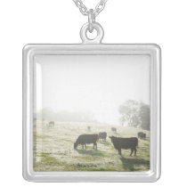 Cows grazing in field in morning light. silver plated necklace
