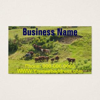 Cows Grazing On Hillside In Maine Farm Field Business Card