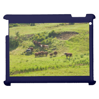 Cows Grazing On Hillside In Maine Farm Field Case For The iPad 2 3 4