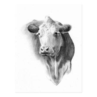 COW'S HEAD IN PENCIL POSTCARD