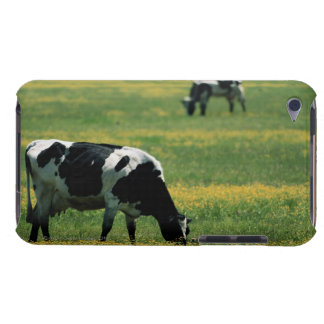 Cows in a Field of Flowers Barely There iPod Case