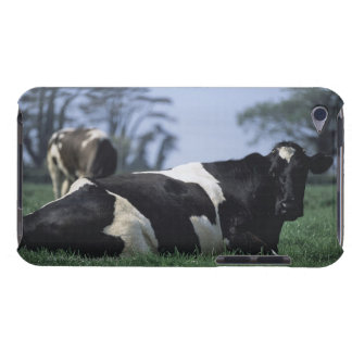 cows in a pasture barely there iPod cover