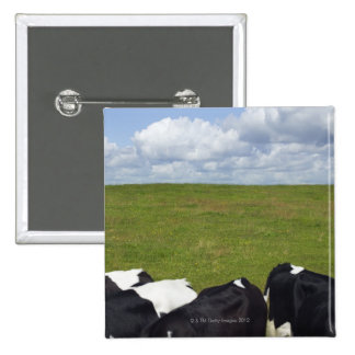 Cows in a pasture. button