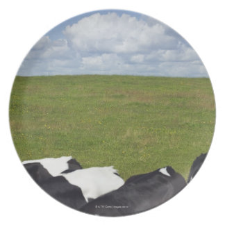 Cows in a pasture. dinner plate
