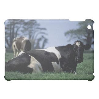 cows in a pasture iPad mini case