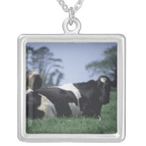 cows in a pasture silver plated necklace