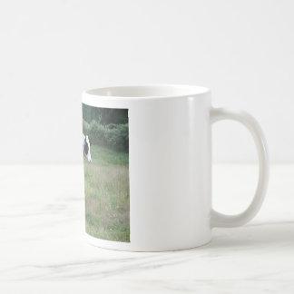 Cows in a Row Classic White Coffee Mug