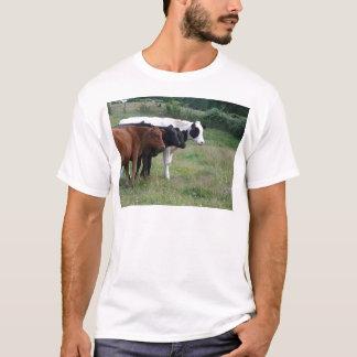 Cows in a Row T-Shirt