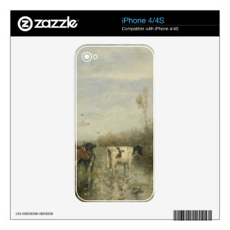 Cows in a Soggy Meadow Decals For The iPhone 4S