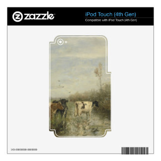 Cows in a Soggy Meadow iPod Touch 4G Skins