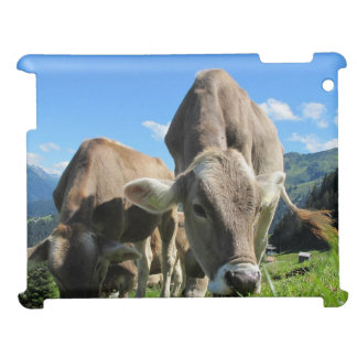 Cows in Austria Cover For The iPad
