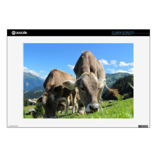 "Cows in Austria Decal For 13"" Laptop"