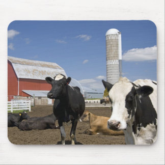 Cows in front of a red barn and silo on a farm 2 mouse pad