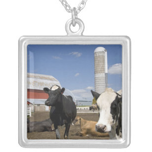 Cows in front of a red barn and silo on a farm 2 silver plated necklace