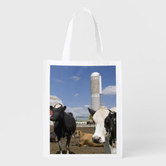 Cows in front of a red barn and silo on a farm 2 reusable grocery bags