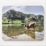 Cows in Lakes of Covadonga, Asturias Mousepad