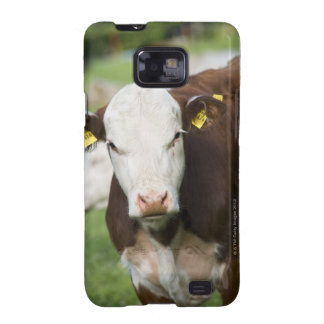 Cows in pasture, close-up samsung galaxy s2 covers