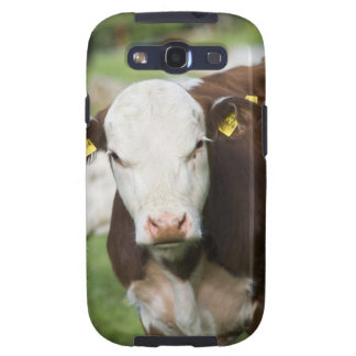 Cows in pasture, close-up galaxy s3 case