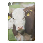 Cows in pasture, close-up iPad mini covers