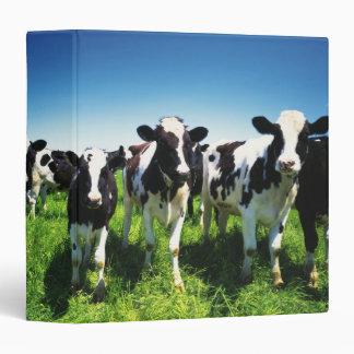 Cows in the field, Betsukai town, Hokkaido Vinyl Binder