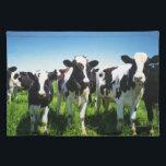 "Cows in the field, Betsukai town, Hokkaido Placemat<br><div class=""desc"">Cows in the field,  Betsukai town,  Hokkaido prefecture,  Japan | GYRO PHOTOGRAPHY/amanaimagesRF | AssetID: 96586819</div>"