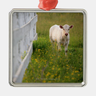 Cows in the field metal ornament