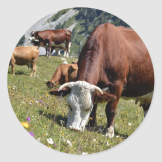 Cows in the French Alps Classic Round Sticker