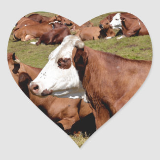 Cows in the French Alps Heart Sticker
