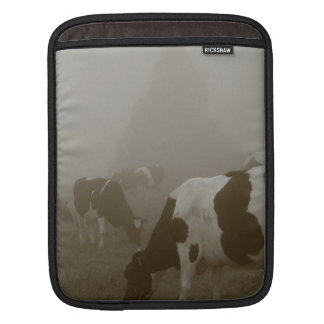Cows in the mist iPad sleeve