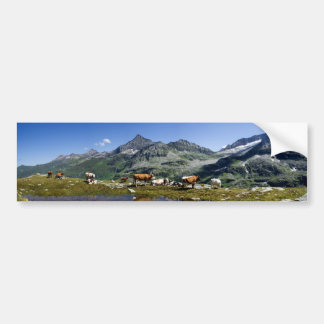 Cows In The Mountains Bumper Sticker