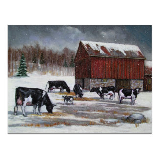 Cows in Winter, Original Painting Postcard