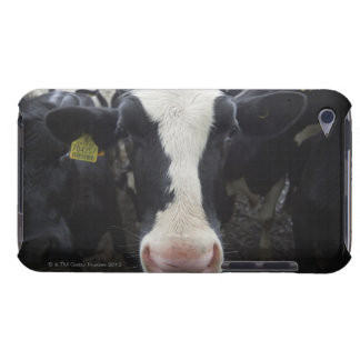 Cows iPod Touch Case
