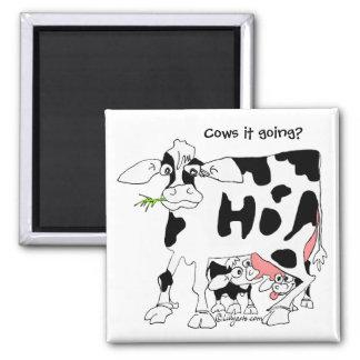 Cows it going? Square Fridge Magnet