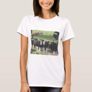 ~ Cows Lookin' Back ~ T-Shirt