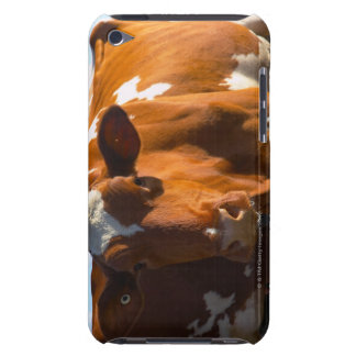Cows on farm iPod Case-Mate cases