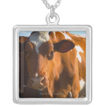 Cows on farm silver plated necklace