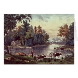 Cows on the Shore of a Lake Greeting Card