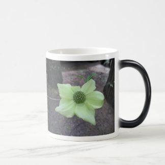 Cow's Parsnip morphing  Mug