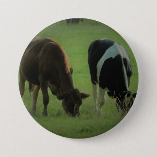 Cows photo Round Badge Pinback Button