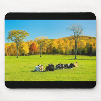 Cows Resting On Farm Field In Autumn Mouse Pad