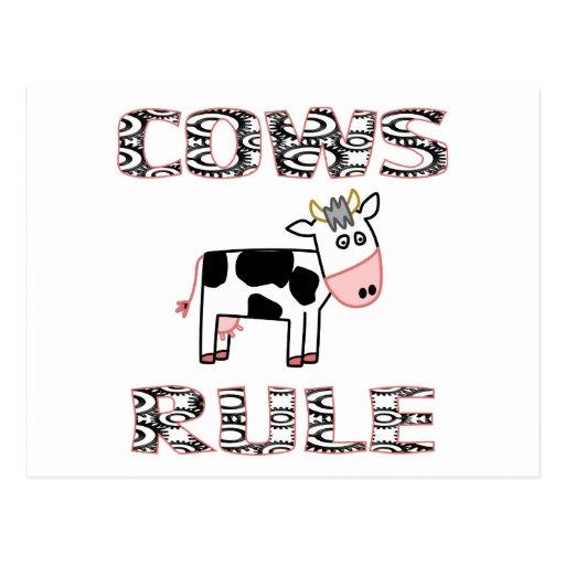 COWS RULE POSTCARD