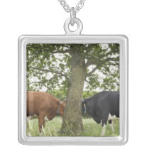 Cows standing face to face behind tree silver plated necklace