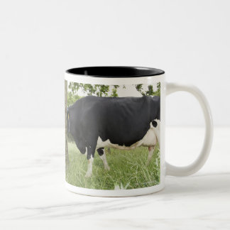 Cows standing face to face behind tree Two-Tone coffee mug