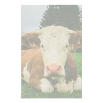 Cows Stationery