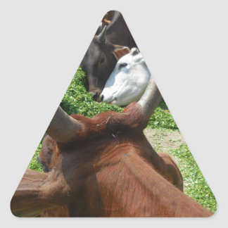 Cows Taking Green Grass Triangle Sticker