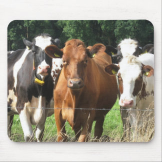 Cows Themed Gifts: Forever Friends Mousepad