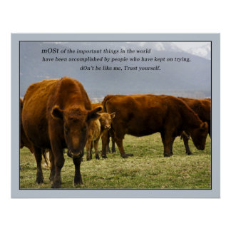 Cows with quote 1 poster